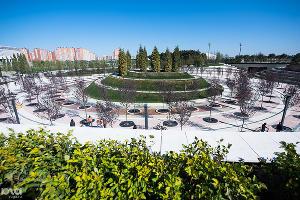 Техническое открытие парка у стадиона футбольного клуба «Краснодар». 28 сентября ©Фото Юга.ру