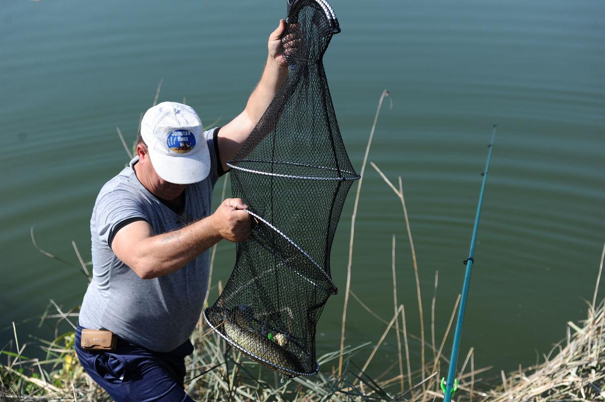 можно ли с апреля по июнь ловить рыбу в дону